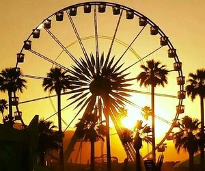 dreamy, ferris wheel, and palm trees image