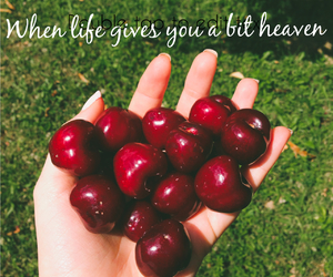 cherry, fall, and food image