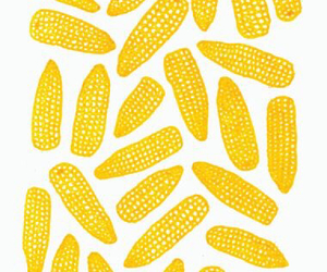 corn and yellow image