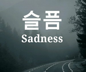korean, quote, and sadness image