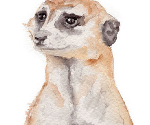 animals, art, and watercolor image