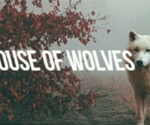 house, wolf, and wolves image