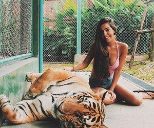 animal, girl, and tiger image