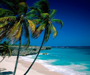 beach, barbados, and sea image