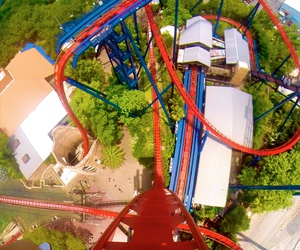 florida, holiday, and Roller Coaster image