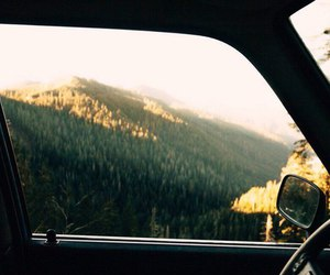 car, nature, and forest image