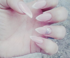 nails, french nails, and stiletto nails image