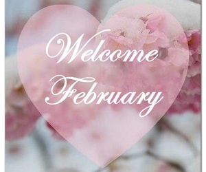 february, hearts, and pink image