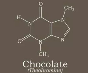 chemistry, chocolate, and yummy image