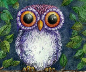 art, draw, and owls image