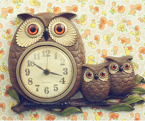 clock and owls image