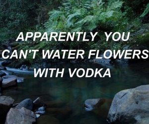alcohol, dark, and flower image