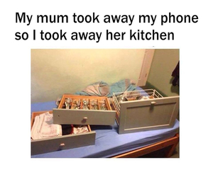 funny, kitchen, and phone image