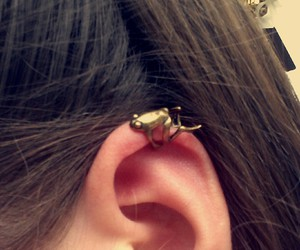 ear, frog, and pretty image