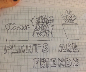 are, notebook, and plants image