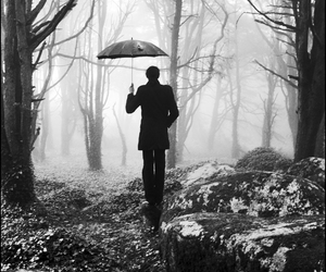 man, umbrella, and forest image