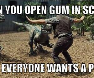 funny, gum, and lol image