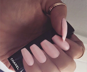 pink nails, gold rings, and chanel image