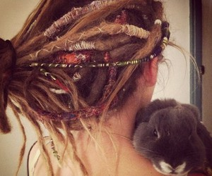 dreads, hair, and rabbit image