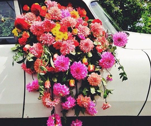 flowers, car, and pink image