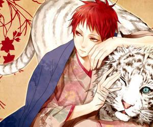 kuroko no basket, tiger, and Akashi image
