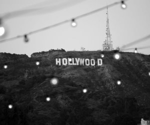 hollywood, light, and photography image