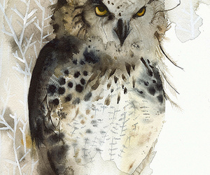 owls and art image