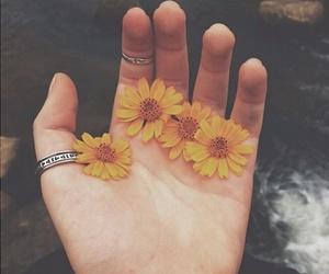 flowers, hand, and hipster image