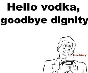 vodka, funny, and drunk image