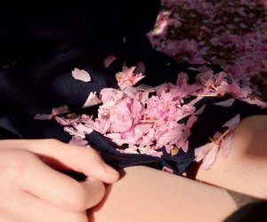girl, sakura, and student image