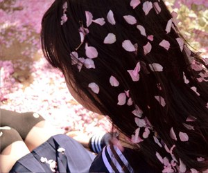 girl, sakura, and hair image