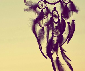 dreamcatcher, Dream, and feather image