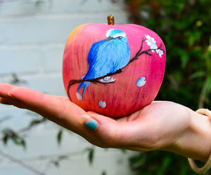 apple, bird, and blue image