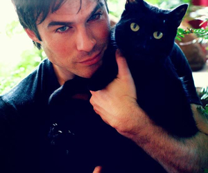 ian somerhalder, cat, and ian image