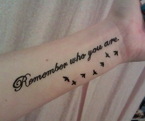bird, tattoo, and quote image