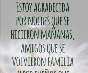 amigos, sueños, and familia image