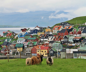 buildings, europe, and faroe islands image