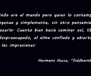 herman hesse, caminar, and el mundo image