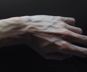 anatomy, beautiful, and bones image