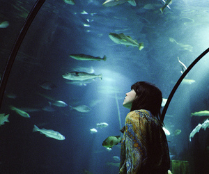 fish, girl, and aquarium image