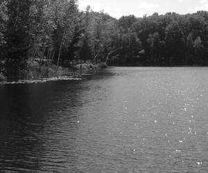 black and white, lake, and swimming image