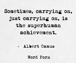 albert camus, carry on, and quote image