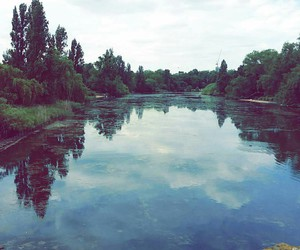 beautiful, river, and tree image