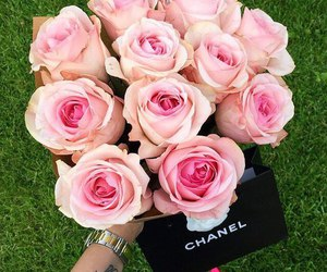 rose, chanel, and flowers image