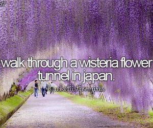 japan, bucket list, and flowers image