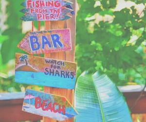 beach, summer, and bar image