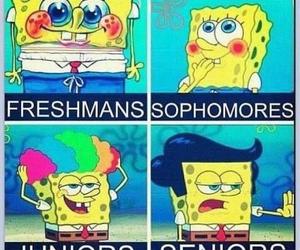 spongebob, funny, and junior image
