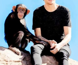 louis, tomlinson, and ♥ image