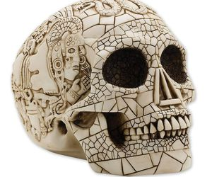 skull art and skull. skulls image
