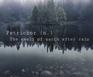 pale, earth, and grunge image